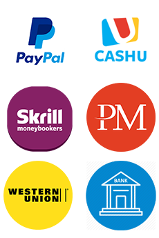 PayPal - Bank transfer - Credit Card - Perfect Money - Skrill - CashU - western union