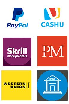 PayPal - Bank transfer - Credit Card - Perfect Money - Skrill - CashU - western union